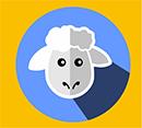 icon-domba